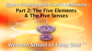 Part 2: The Five Elements & The Five Senses