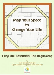 Map-Your-Space-To-Change-Your-Life-cover-179x250
